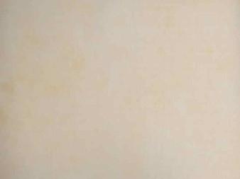 "MAS 513-W Cream, Maywood Studio Shadow Play Light Cream Colour. 100% Cotton, 42"" wide"