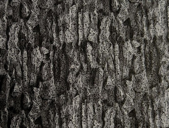 """31423-02 grey, Danscapes Architectural By RJR Fabrics Grey Tree Like Fabric, 100% Cotton, 42"""" wide"""