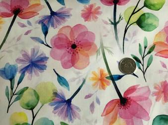 Blossom, 54815 448