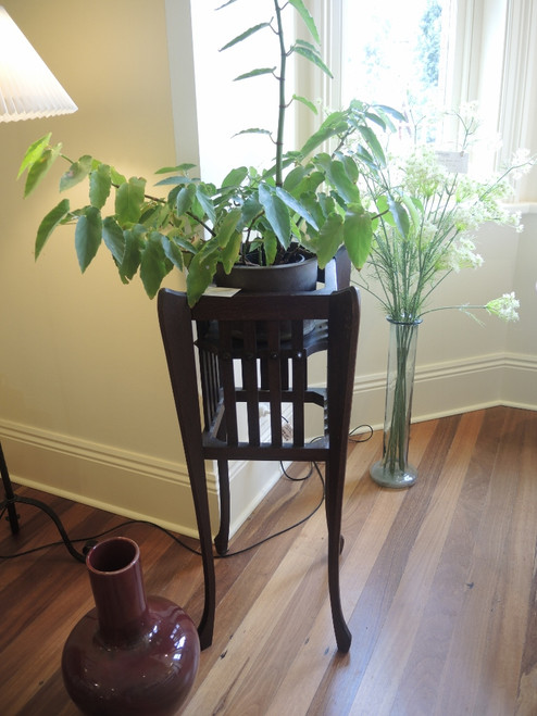 Arts and Crafts Australian Jardiniere or Plant Stand