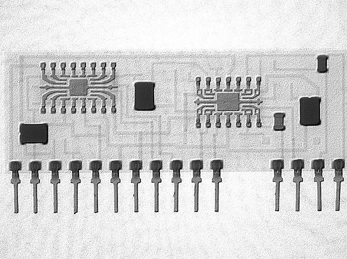Hybrid encapsulated circuit