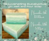 melt pour diy soap class eucalyptus