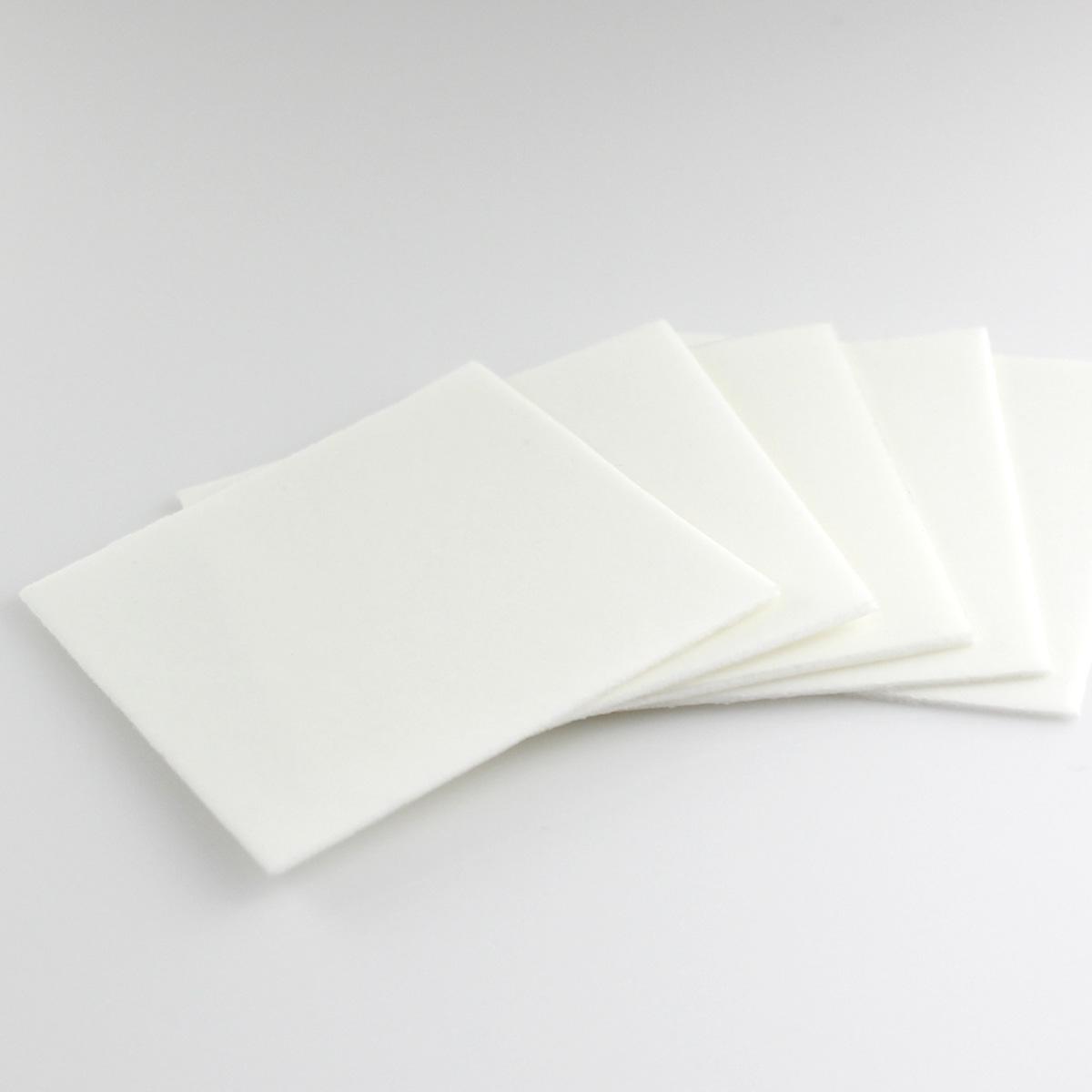 Polishing Pads [stand alone]