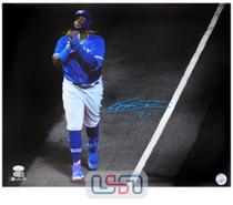 Vladimir Guerrero Jr. Blue Jays Autographed 16x20 Photograph Photo JSA Auth #20