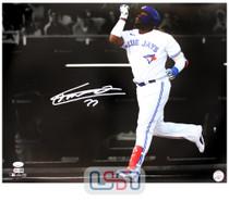 Vladimir Guerrero Jr. Blue Jays Autographed 16x20 Photograph Photo JSA Auth #24