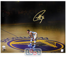 Stephen Curry Warriors Signed Autographed 16x20 Photograph Photo USA SM Auth #5