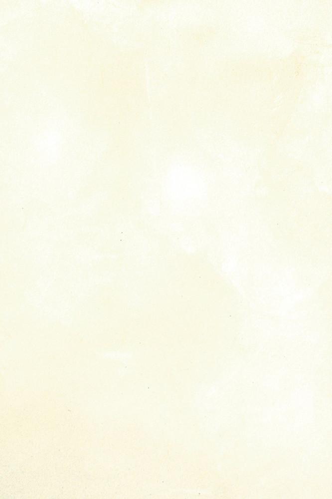 LusterStone Snowflake White Gallon