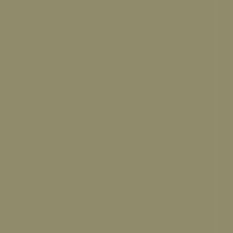 SetCoat Sage Green Gallon