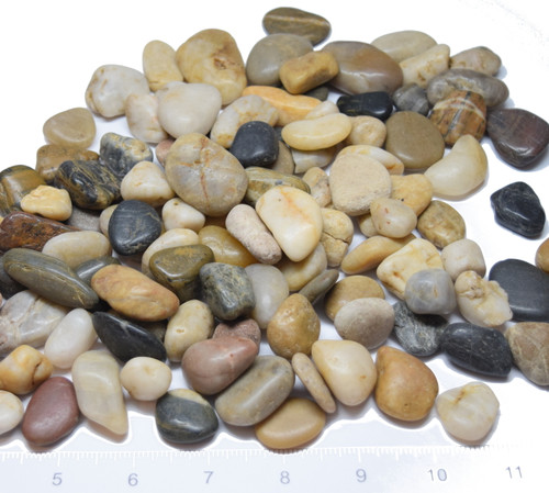 1 lb Medium Stone Pebbles /  River Rock - Natural Mixed Colors (US Shipping only)