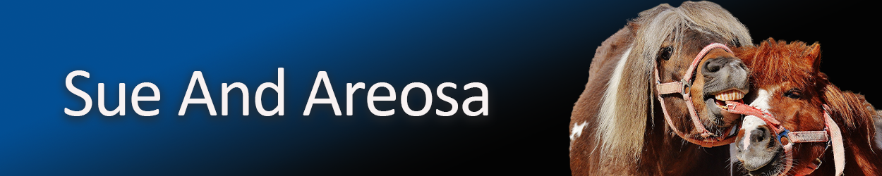 sue-and-areosa-copy.png
