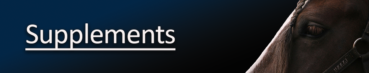supplements-updated-banner-copyyy.png