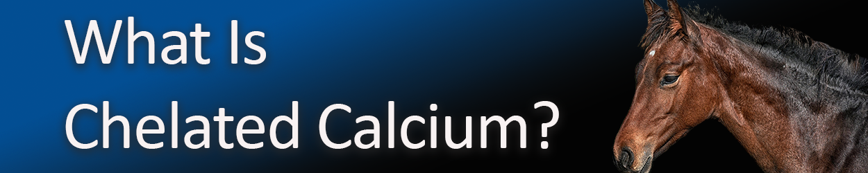 what-is-chelated-calcium-copy.png