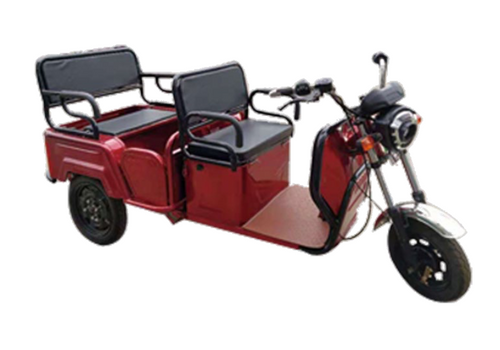 PPM6000 2-Person Electric Trike Recreational Scooter