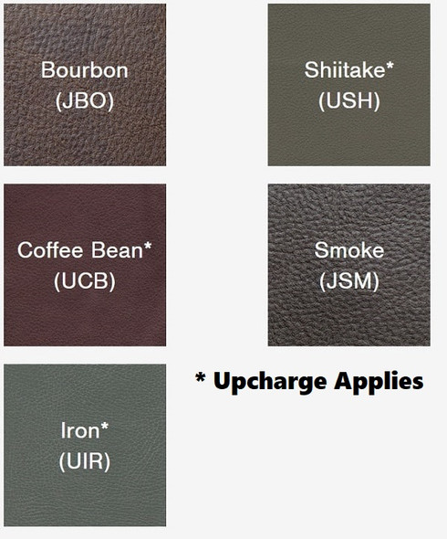 EZ Sleeper Lift Chair Fabric Choices