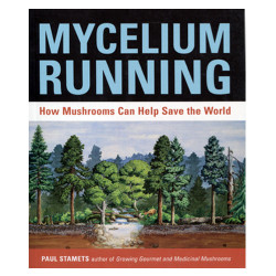 Mycelium Running - by Paul Starnets