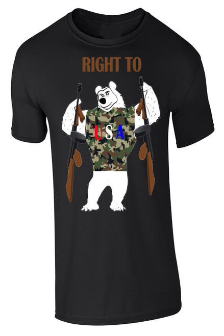 Right to Bear Arms 2nd Amendment