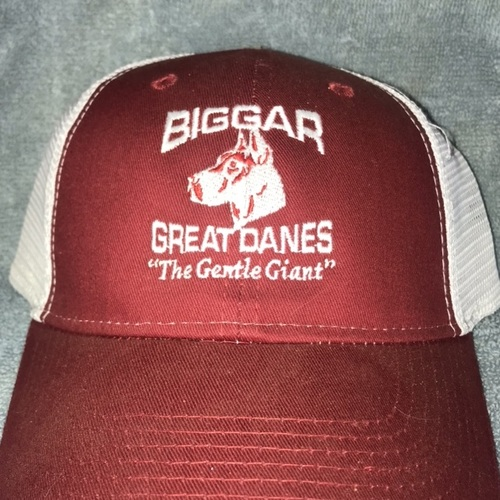 Biggar Danes ball cap free shipping in usa