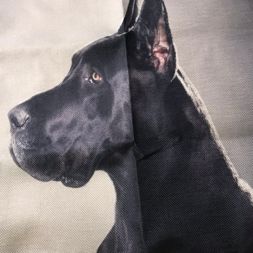 Black Great Dane Pillow or cloth Wall Art