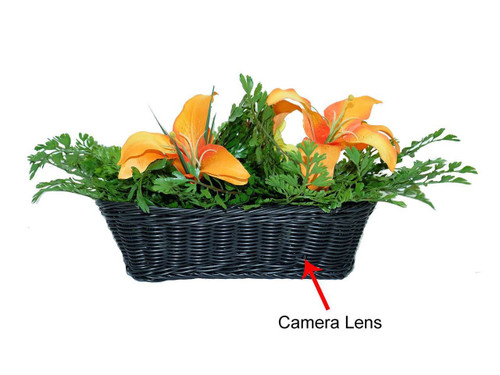 Fern WiFi HD Hidden Camera