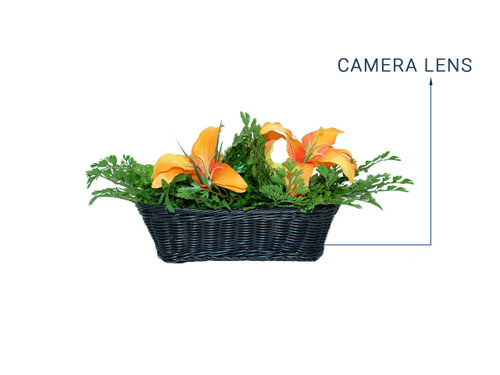 4K Faux Plant WiFi Hidden Camera