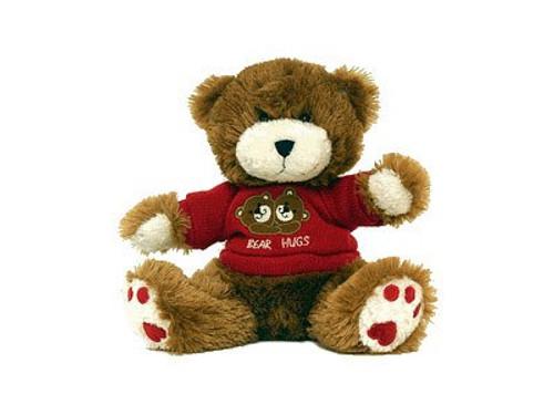 Teddy Bear Nanny Cam