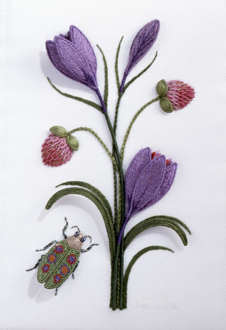Crocus, Clover and Jewel Beetle