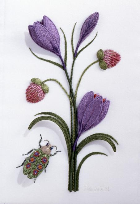 Crocus, Clover and Jewel Beetle