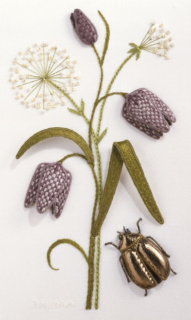 Fritillary, Fennel and Scarab Beetle