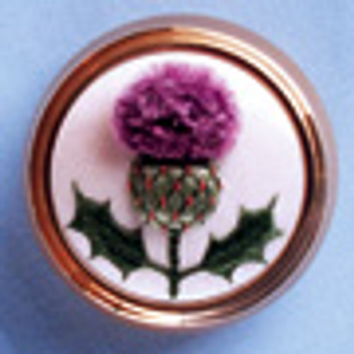 A Scottish Thistle (Thistle Pot)