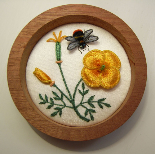 California Poppy and Bumble-Bee (or A Hint of Spring)