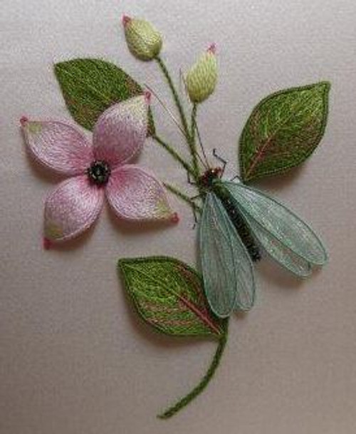 Green Lacewing and Dogwood