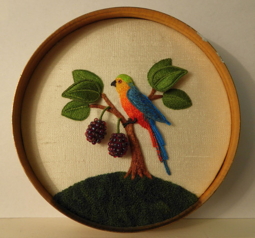 Parrot and Boysenberry Bush