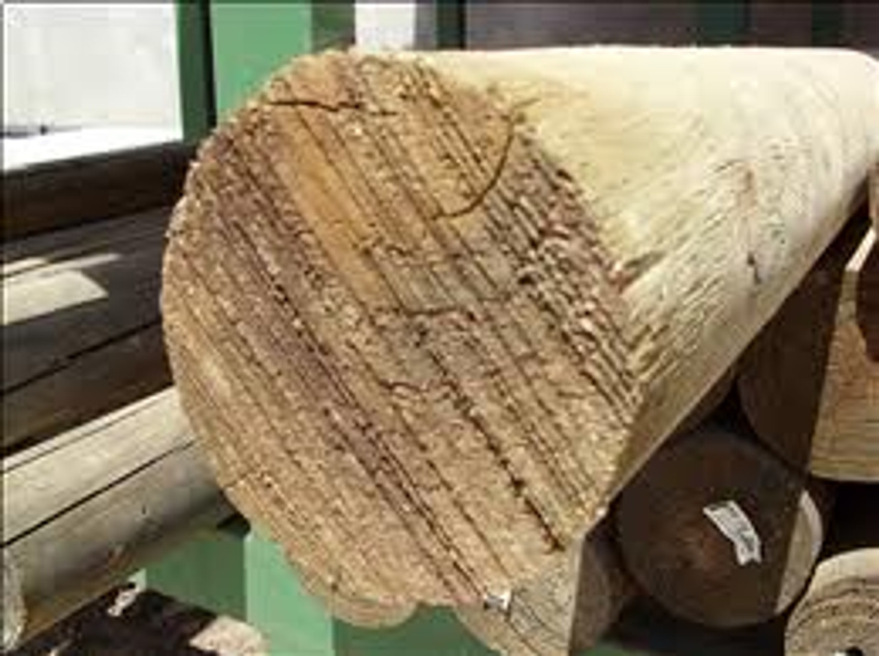 Treated Pine Logs Perfect Rounds