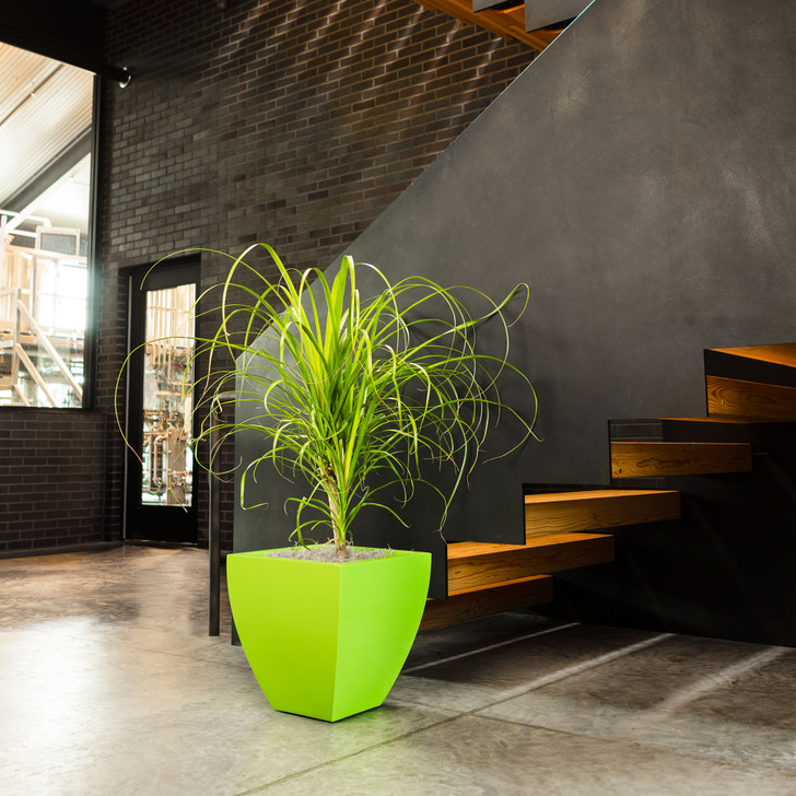 Lima Tapered Square Planter