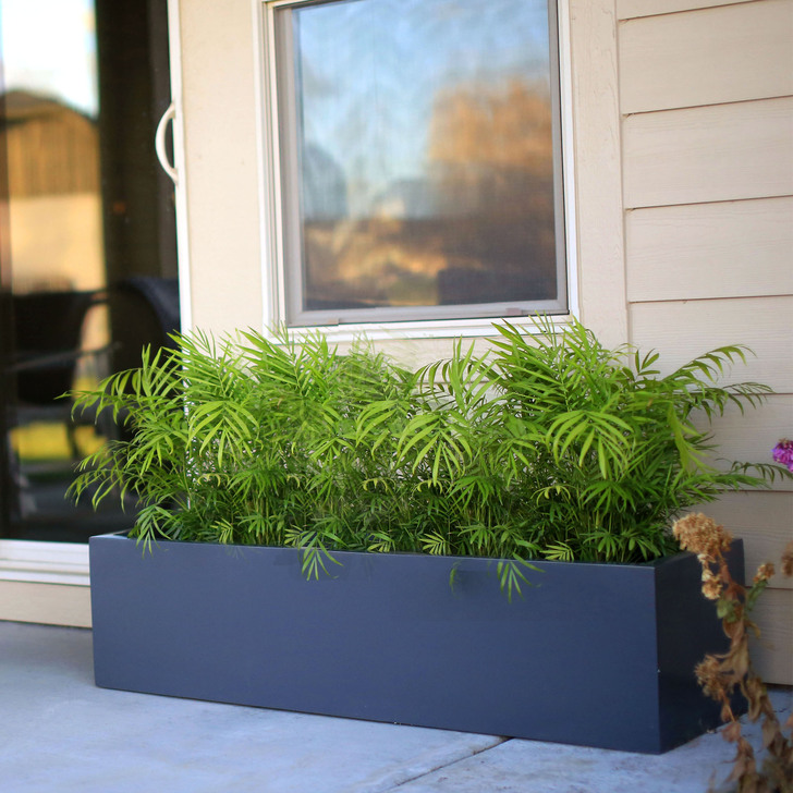 "Low Profile Planter Boxes - 12"" Tall Collection"