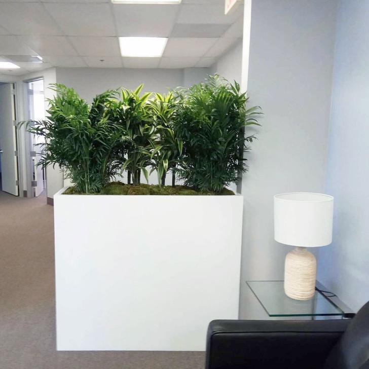 Perth Tall Planter Boxes