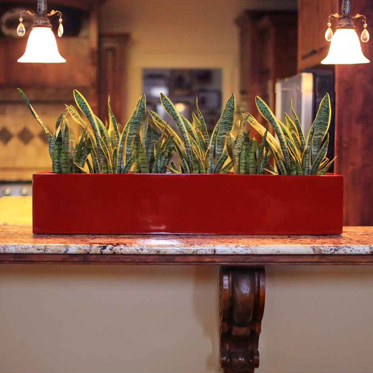 Salon Window Box Planter indoor display