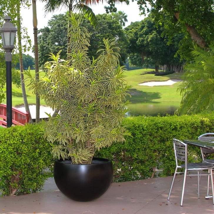 Tarragona Bowl Planter Pot