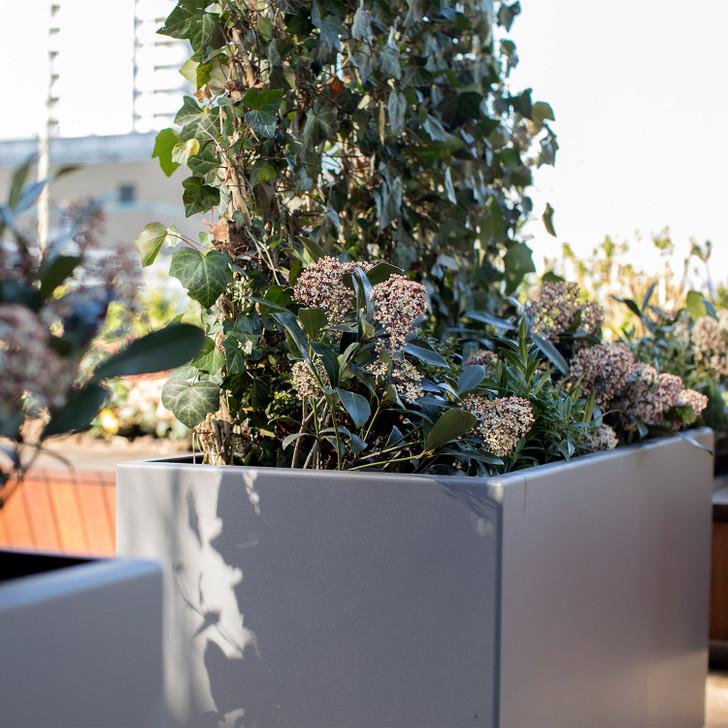 LaSalle Modern Metal Cube Planter