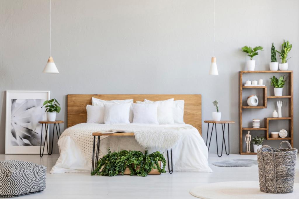 bedroom with indoor plants