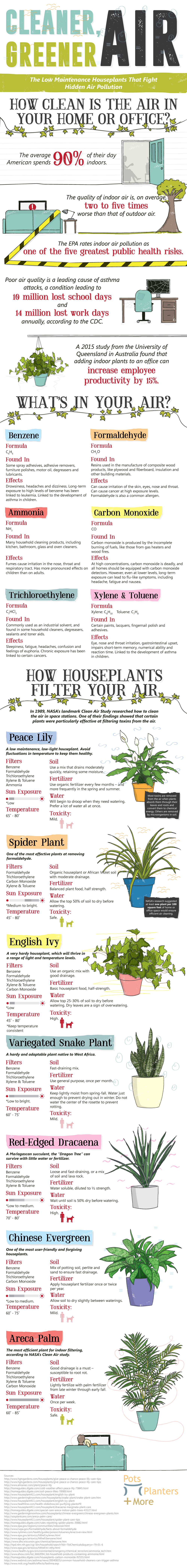 infographic on air quality and house plants that improve it