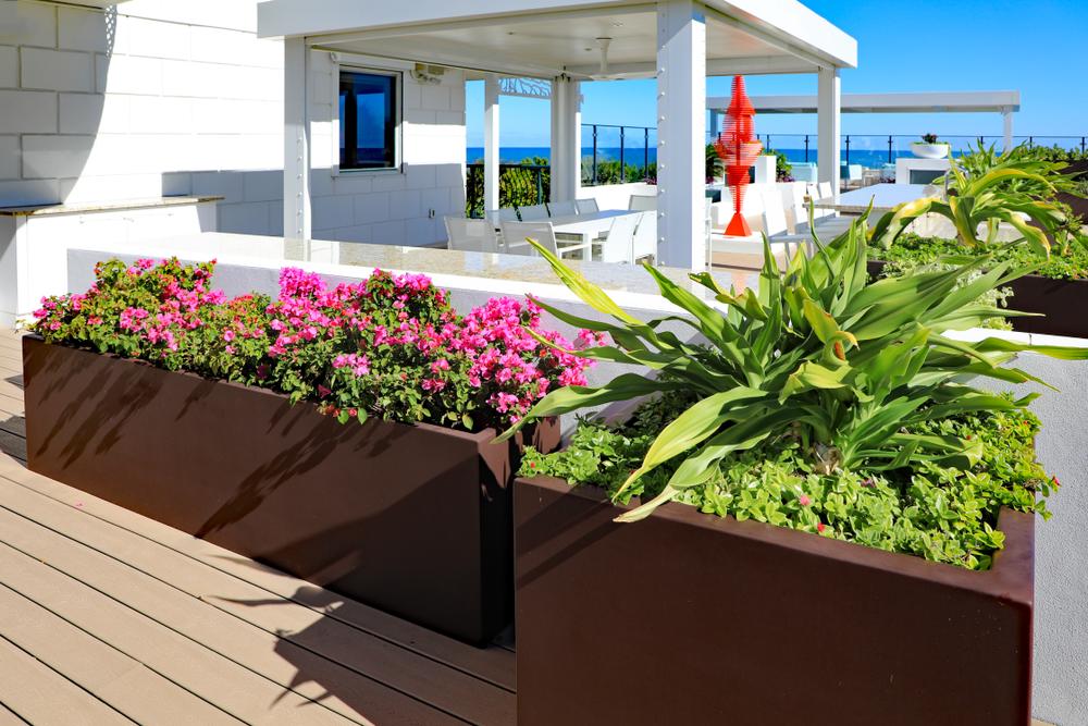 outdoor planters-774866965.jpg