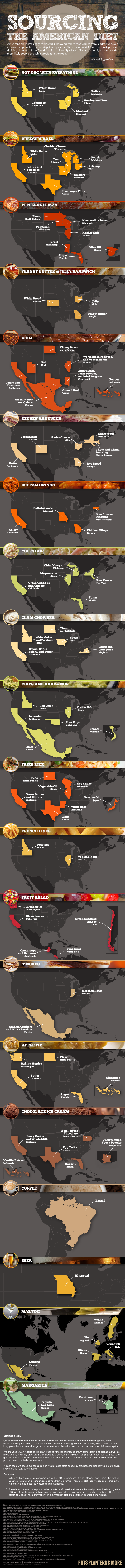 Infographic study of an American's diet