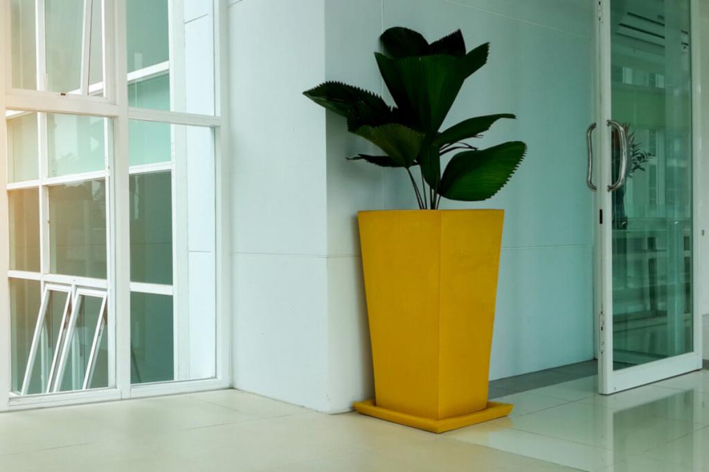 yellow planter in front of an office door