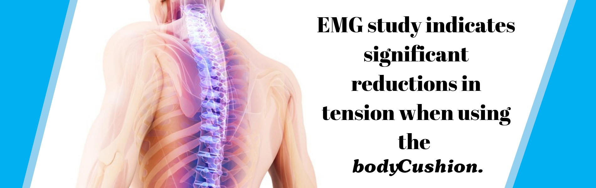 EMG Study indicates significant reductions in tension when using the bodyCushin