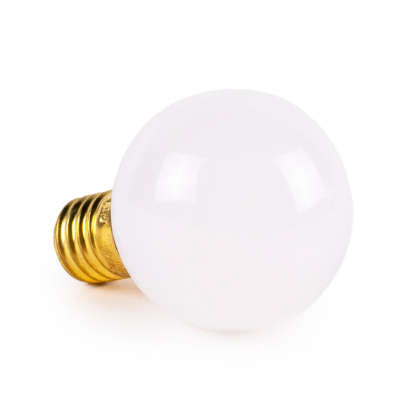 Top View Warm White Frosted Opaque Non-Dimmable G40 LED Retrofit Bulbs - C9 Base