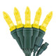 """Gold M5 """"Mini Ice"""" LED Lights - Commercial Grade - 25 Light Count - Green Wire"""