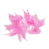 Decorative Feathers - Light Pink