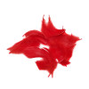 Decorative Feathers - Red