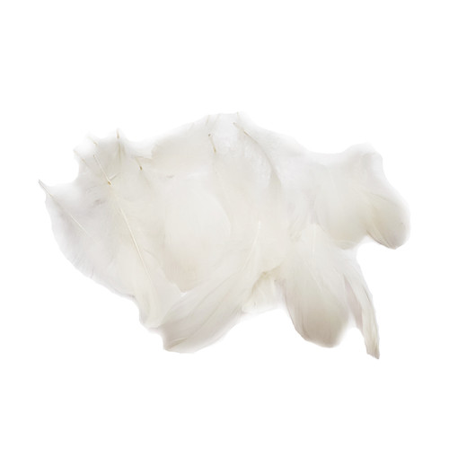 Decorative Feathers - White